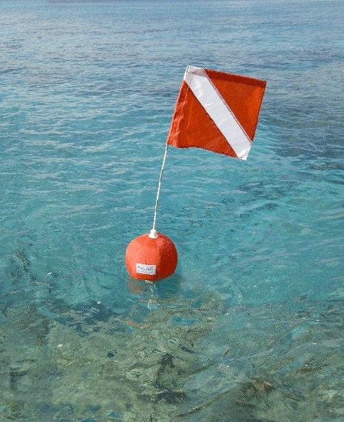 Dive Flag & Float